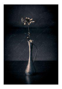 stilleben blomma fine art poster