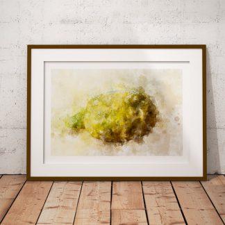 citron poster