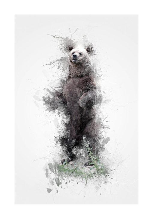 björnen björn brunbjörn poster