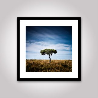 trädet poster gotland