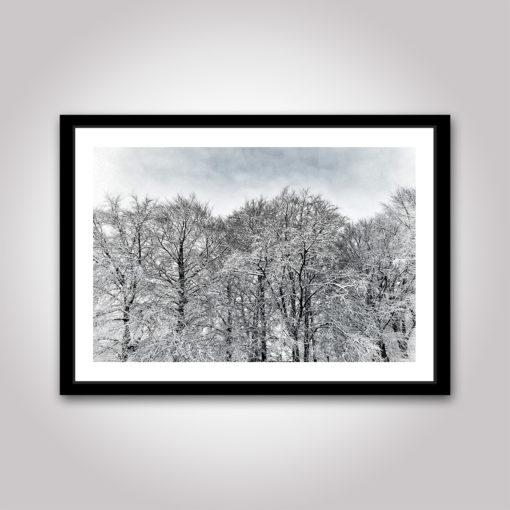 beijers park kirseberg vinter snö poster